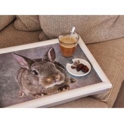 cb23008-laptop-kussen-konijn