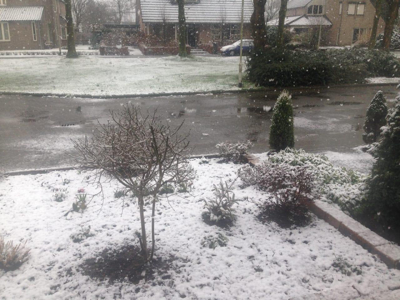 sneeuw in maart
