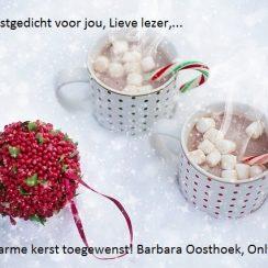 mijn kerstgedicht voor jou