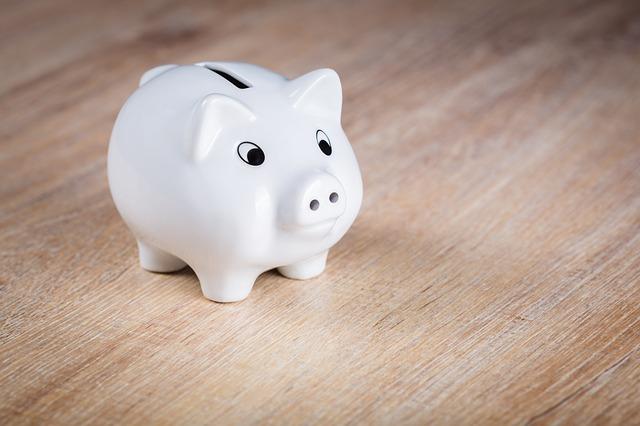 Besparen kan! Goed zoeken wordt beloond! 9 tips!
