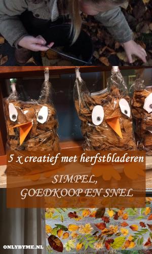 5X CREATIEF MET HERFSTBLADEREN, SIMPEL, GOEDKOOP EN SNEL.