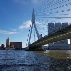 Citytrip naar Rotterdam; Verblijf in Art Hotel; Afbeelding: de Erasmusbrug; #citytriprotterdam #rotterdam