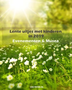 Lente uitjes met kinderen in 2019: evenementen en musea. Afbeelding toont lentebloemen in veld met zonlicht erop.#lenteuitjes #kinderuitjes #eropuit #eropuitmetkinderen #lente #spring